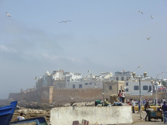 Murallas de Esauira: vue de la médina depuis le port