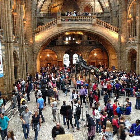 Natural History Museum: Kinda full.