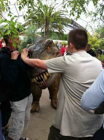 Eden Project: The runaway dinosaur