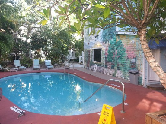 Wicker Guesthouse : Pool view