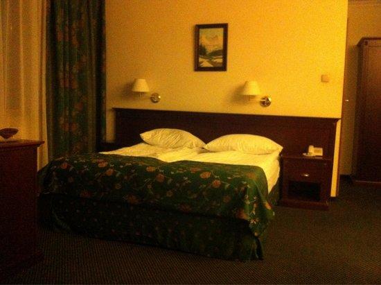 Czarny Potok Hotel: Apartament