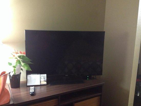 Super 8 Picayune: TV.