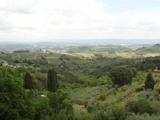 Walkabout Florence Tours: Typical Tuscan landscape
