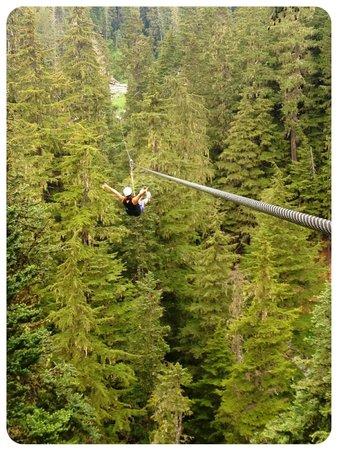Ziptrek Ecotours : Ziptrek Whistler
