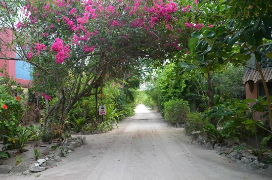 Sin Duda Villas: Road to the Villas