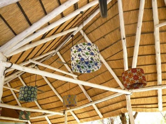 The Rainforest Cafe: ORIGINALI LAMPADARI