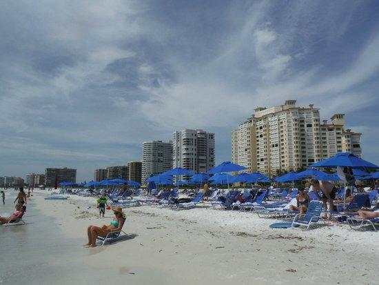 JW Marriott Marco Island Beach Resort: On the beach