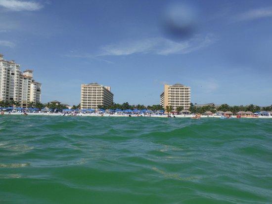 JW Marriott Marco Island Beach Resort: View from the ocean
