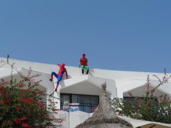 SENTIDO Phenicia: Spiderman