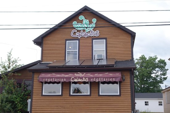 Calactus Restaurant: Outside