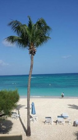 Lacovia Grand Cayman: View from my room ��