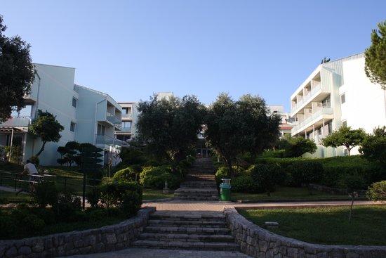 Valamar Club Dubrovnik: hotel visto da piscina