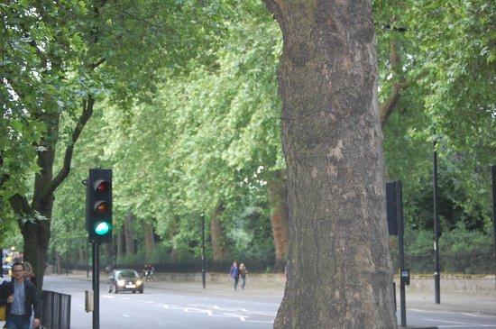 Thistle Hyde Park: parco adiacente