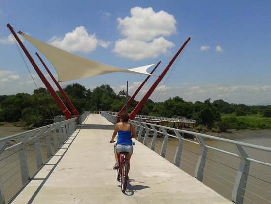 El Manso - Guayaquil & Santay Bicycle Trips: Bridge to Isla Santay