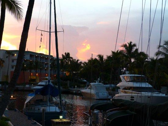 Marina Del Mar Resort And Marina : Vue de la chambre