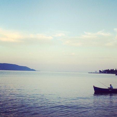 Hotel Gardenia al Lago: The lake