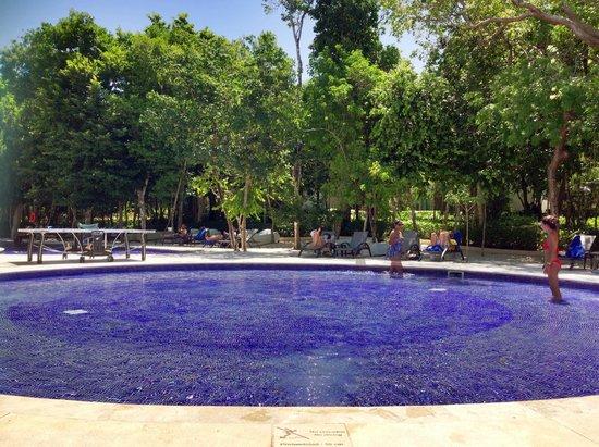 Luxury Bahia Principe Sian Ka'an : Pool Area