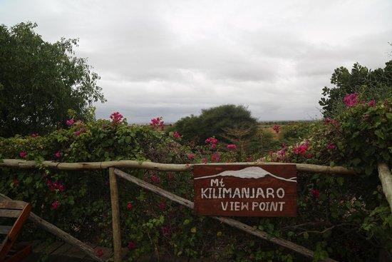 Kia Lodge – Kilimanjaro Airport: View from The Pool