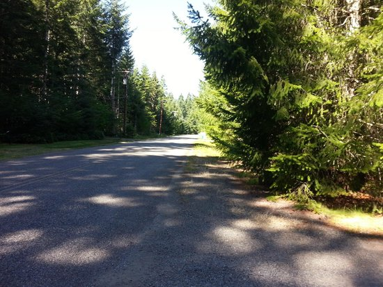 BaseCamp Cottages: Quiet road in front of Tamanos