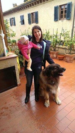 Montespertoli, Italia: NOI E THOR