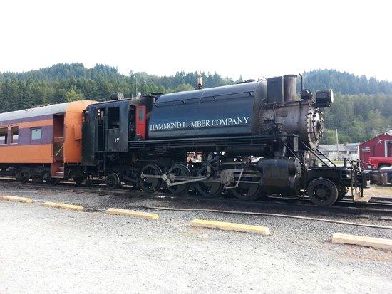 Mt. Rainier Scenic Railroad: Mt Rainier Scenic Railroad