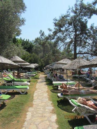 Suncity Hotel & Beach Club: Sun City Private Beach