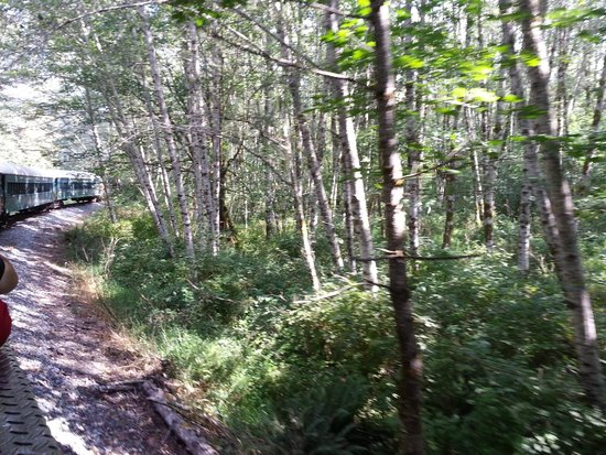 Mt. Rainier Scenic Railroad: View from train ride