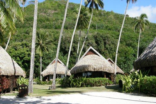Sofitel Moorea Ia Ora Beach Resort : The garden bungalows