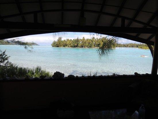 Bora Bora Ecolodge: vue du bungalow