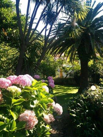 Quinta do Rio Touro: Garden in August