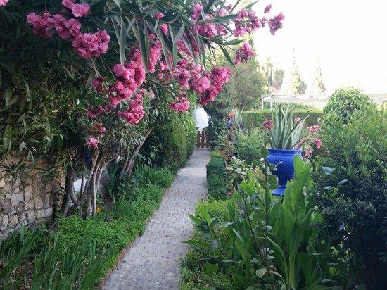 Hotel  Alavera de los Baños: The gardens