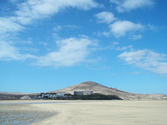 Melia Gorriones Fuerteventura: Paseo por la playa.