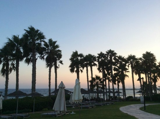 Le Meridien Limassol Spa & Resort : Sunset