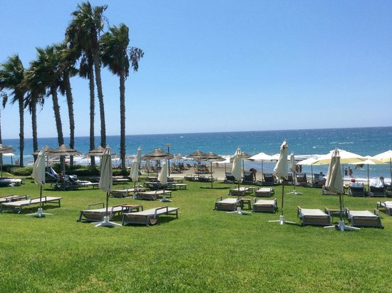 Parklane, A Luxury Collection Resort & Spa : Lawn near the beach