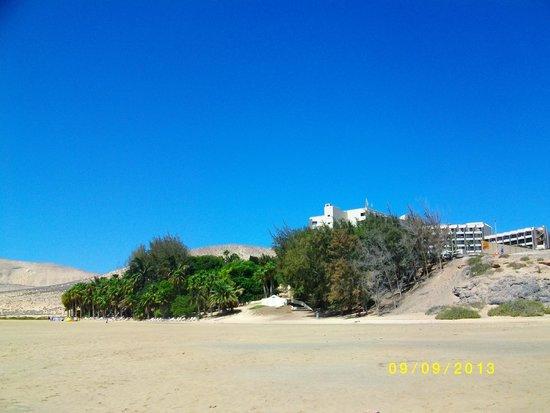 Melia Gorriones Fuerteventura: Oasis