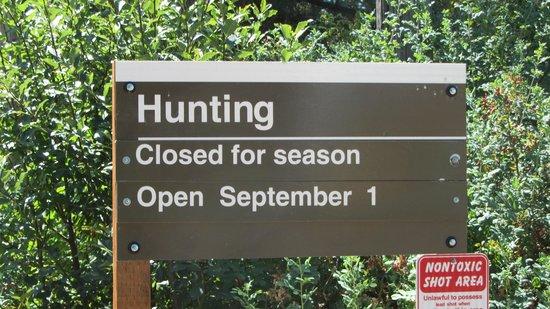 Rooks Park : Hunting?
