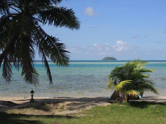 Hotel Atiapiti : vue du bungalow jardin