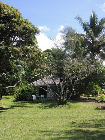 Hotel Atiapiti : bungalow jardin
