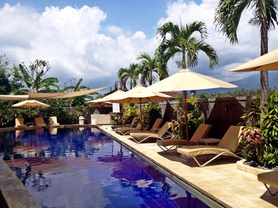 The Lovina : Very nice Private pool