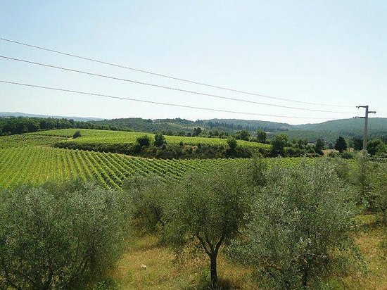 Fun in Tuscany: Tuscan Countryside