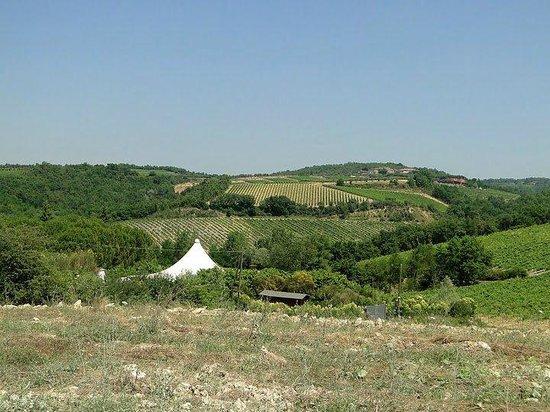 Fun in Tuscany: Tuscan Countryside