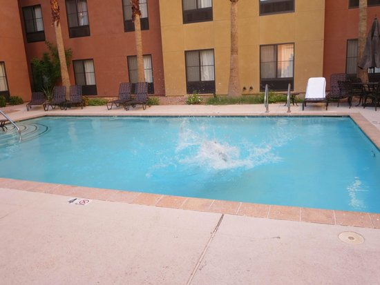 Homewood Suites by Hilton Las Vegas Airport: outdoor pool