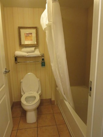 Homewood Suites by Hilton Las Vegas Airport: bathroom