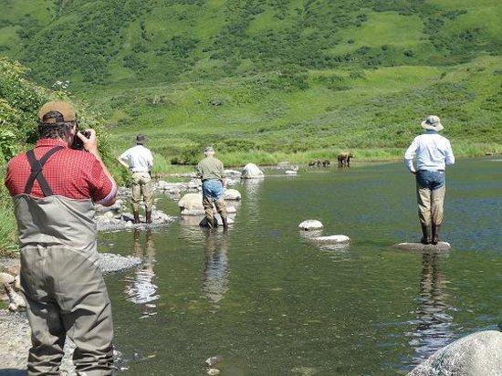 Zachar Bay Lodge: Fish with the bears