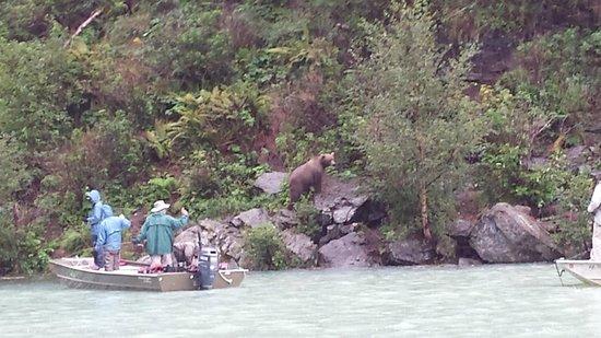 Alaska Fishing & Lodging 사진