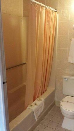 Mariner Motor Lodge: Clean bathroom