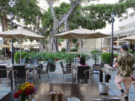 Moana Surfrider, A Westin Resort & Spa : Courtyard leading to the pool and beach