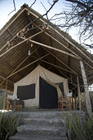 Olduvai Camp: Our Tent
