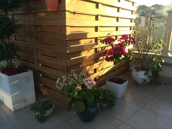 Sirkeci Mansion: Roof-deck Terrace Flowers