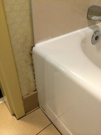 Hilton Garden Inn Gatlinburg Downtown: Moldy next to the bathtub….Isn't this like every third picture on Tripadvisor?!